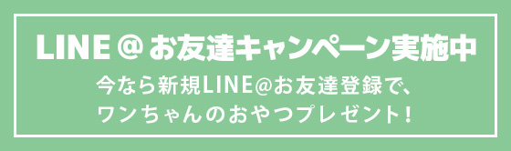 LINE@ お友だち募集中