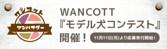 WANCOTT「モデル犬コンテスト」開催!11月11日(月)より応募受付開始!
