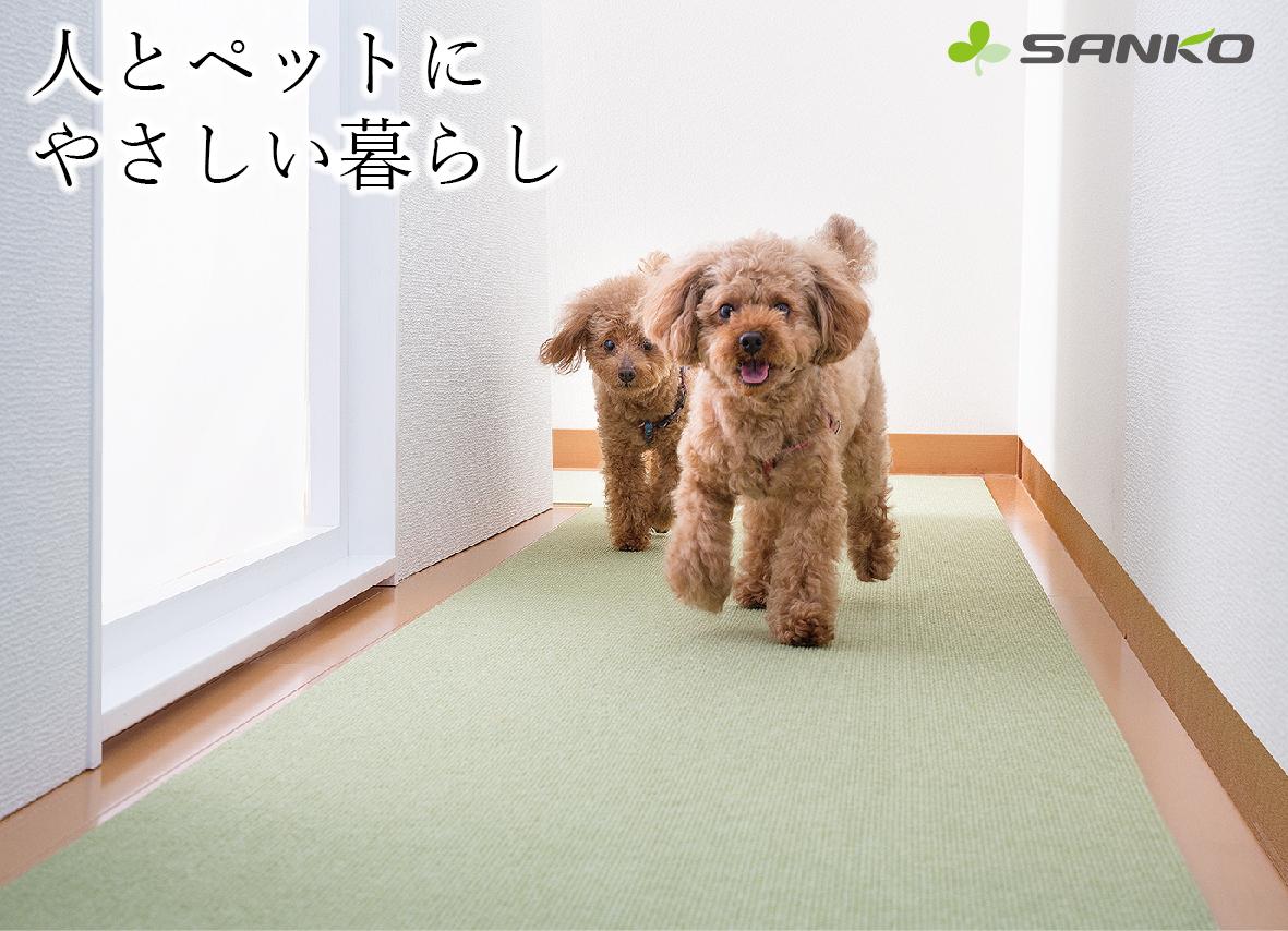 2月1日(土) ペットのアレルギーに関するセミナー★おみやげ付き★