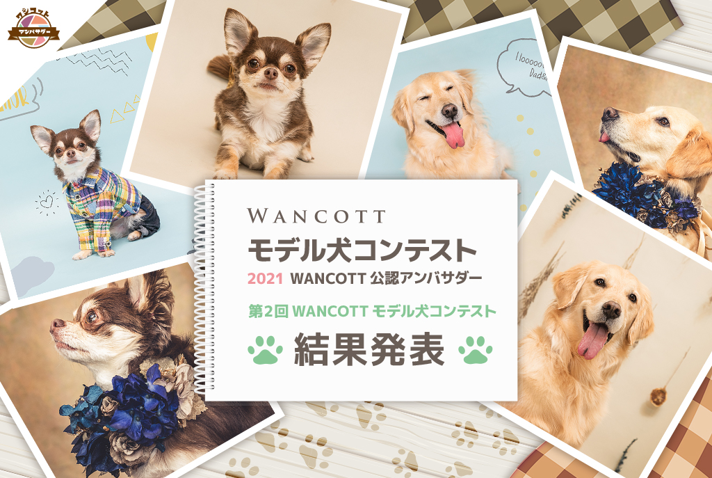 『WANCOTTモデル犬 コンテスト』~2021 WANCOTT公認アンバサダー~ 結果発表!