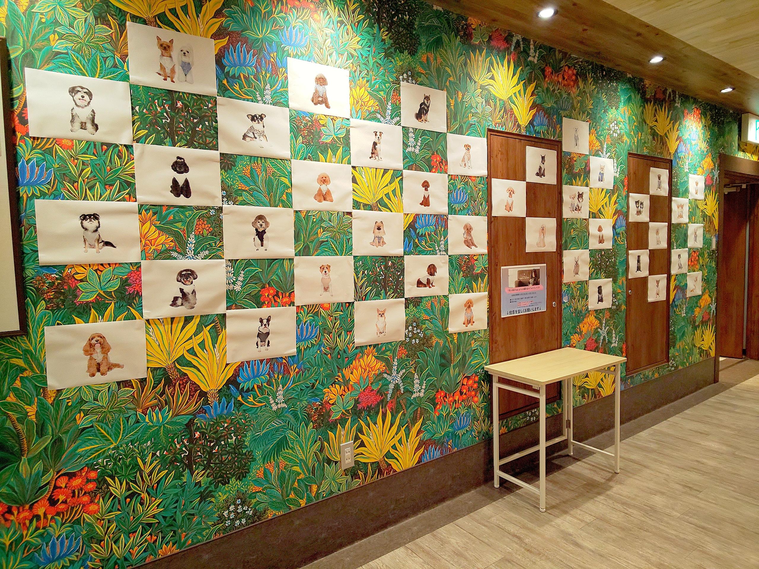 【店頭投票開始!8/25~9/15】free stitch撮影会(7/10)のフォトコンテスト開催!